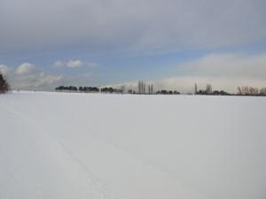 ゴールまであと3kmの地点.農業試験場の畑の中.