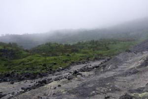溶岩のシワ