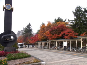 真駒内駅の紅葉