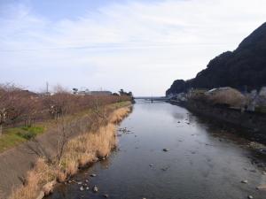 河津川沿い
