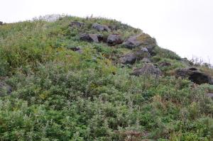 粗粒玄武岩