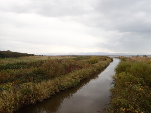 知津狩川河口